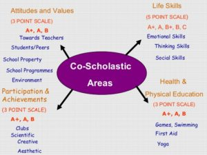 dms-organised-co-scholastic-skill-class